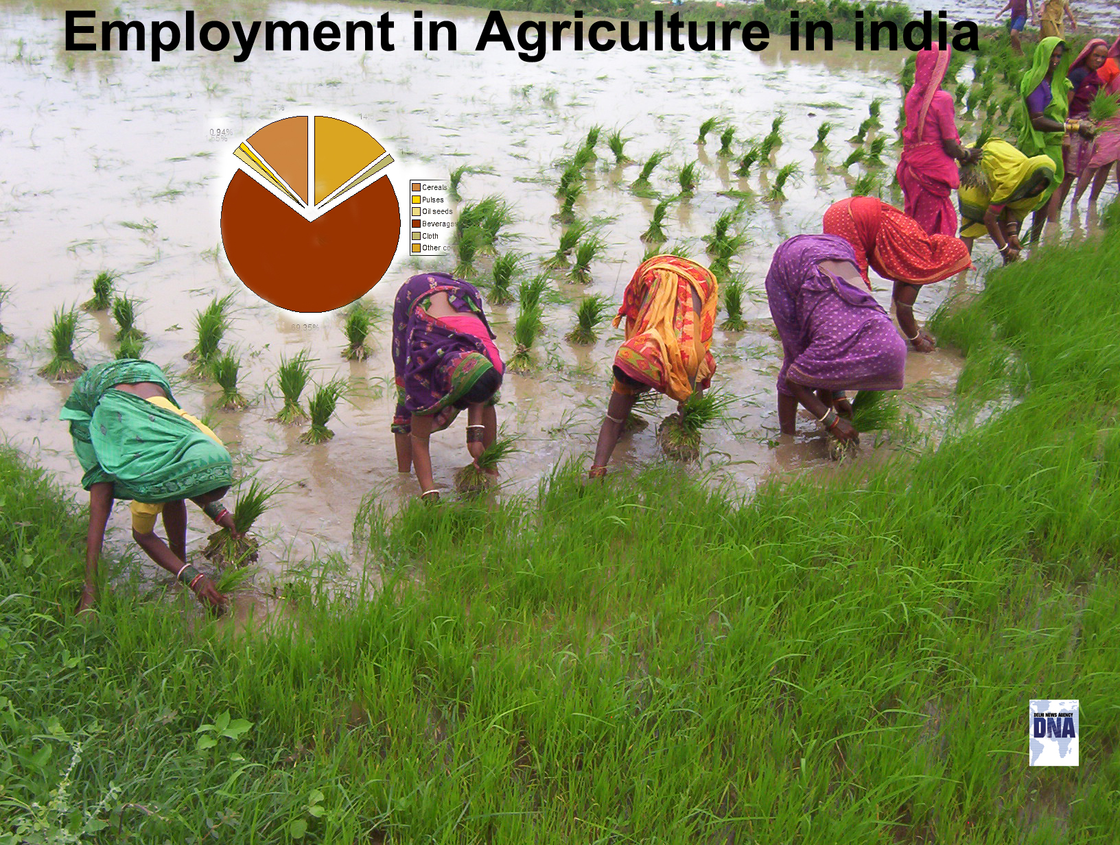 indias agricultural sector an analysis In this article analysis,  the agricultural sector has led to high npas  marketexpress platform brings together some of the industry's top experts on.